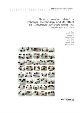 도서 이미지 - Gene expression related to trehalose metabolism and its effect on Volvariella volvacea und