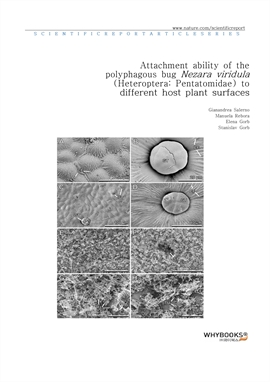 도서 이미지 - Attachment ability of the polyphagous bug Nezara viridula (Heteroptera Pentatomidae) to di