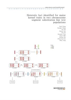 도서 이미지 - Heterotic loci identified for maize kernel traits in two chromosome segment substitution l