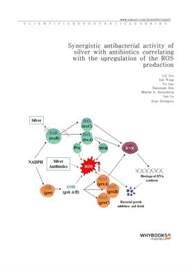 도서 이미지 - Synergistic antibacterial activity of silver with antibiotics correlating with the upregul