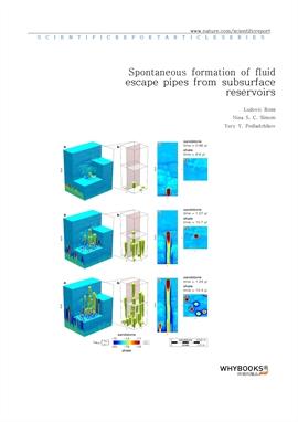 도서 이미지 - Spontaneous formation of fluid escape pipes from subsurface reservoirs