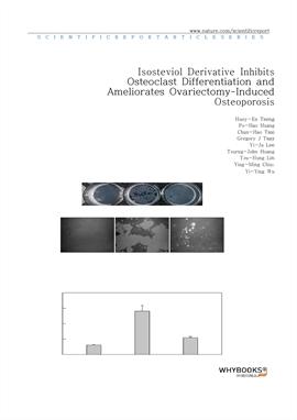 도서 이미지 - Isosteviol Derivative Inhibits Osteoclast Differentiation and Ameliorates Ovariectomy-Indu