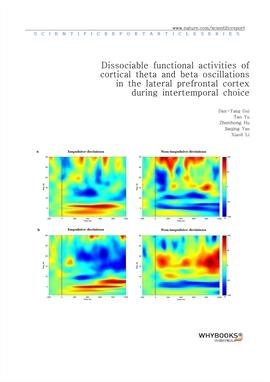 도서 이미지 - Dissociable functional activities of cortical theta and beta oscillations in the lateral p
