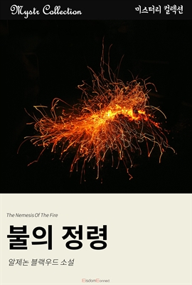도서 이미지 - 불의 정령