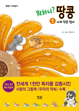 도서 이미지 - [세트] 뭐하니? 땅콩 1~4권