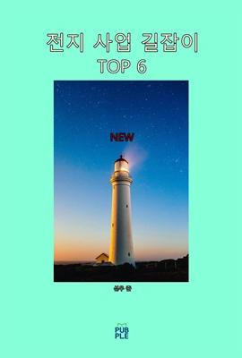 도서 이미지 - 전지 사업 길잡이 TOP 6