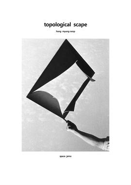 도서 이미지 - topological scape