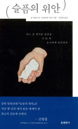 도서 이미지 - 슬픔의 위안