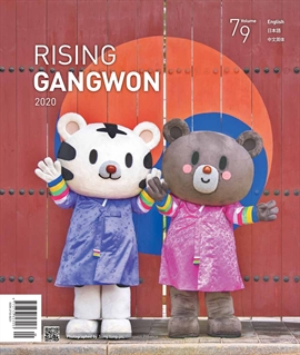도서 이미지 - RISING GANGWON Volum 79