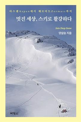 도서 이미지 - 멋진세상, 스키로 활강하다