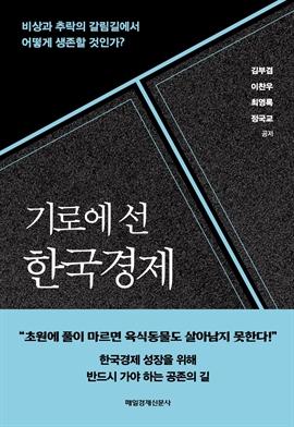 도서 이미지 - 기로에 선 한국경제